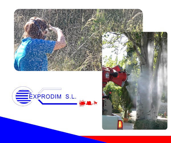 Empresa de control de plagas | Exprodim